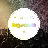 A Journey Into Big Room, Vol. 1 by Various Artists