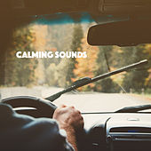 Calming Sounds by Various Artists