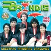 Nuestras Primeras Canciones, Vol. 1 by Grupo Bryndis