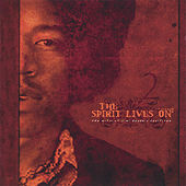 The Spirit Lives On - the Music of Jimi Hendrix Revisited Vol Ii by Various Artists