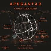 Apesantar by Didier Lockwood