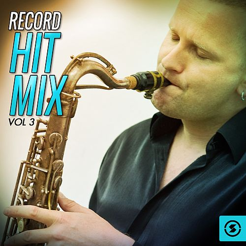 Record Hit Mix, Vol. 3 by Various Artists