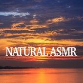 Natural Asmr de Various Artists