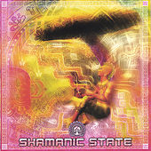 Shamanic State von Various Artists