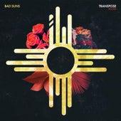 Transpose (Leo Kalyan Remix) von Bad Suns