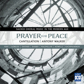 Prayer For Peace - Sacred Choral Music In The Modern Age by Various Artists