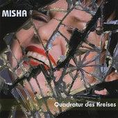 Quadratur Des Kreises von Misha