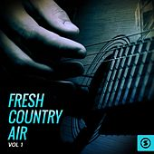 Fresh Country Air, Vol. 1 by Various Artists