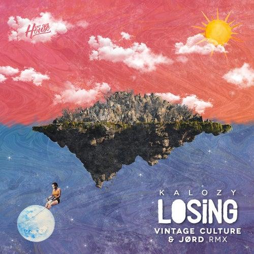 losing remix single de jrdn vintage culture napster