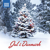 Jul i Danmark von Various Artists