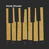A Tribute to Stevie Wonder by Various Artists