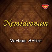 Nemidoonam by Various Artists