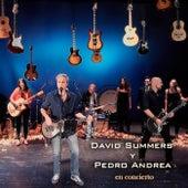 David Summers y Pedro Andrea en Concierto (En Directo) by David Summers