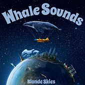 Whale Sounds by Blonde Skies