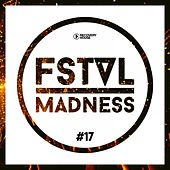 FSTVL Madness, Vol. 17 - Pure Festival Sounds by Various Artists