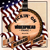 Pickin' On Widespread Panic: A Bluegrass Tribute by Pickin' On