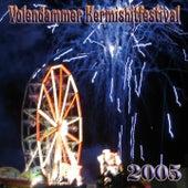 Volendammer Kermis Hit Festival 2005 de Various Artists