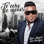 Te Echo de Menos by Luis Miguel del Amargue
