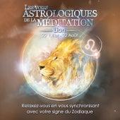 Lion (Relaxez-vous en vous synchronisant avec votre signe du zodiaque) by Various Artists
