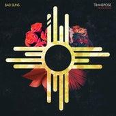 Transpose (Nicita Remix) von Bad Suns