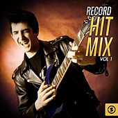Record Hit Mix, Vol. 1 by Various Artists