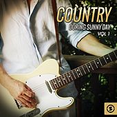 Country During Sunny Day, Vol. 1 by Various Artists
