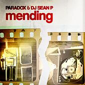 Mending by Paradox