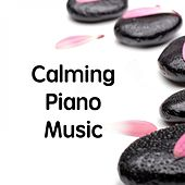 Calming Piano Music by Classical Study Music (1)