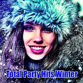 Tota Party Hits Winter de Various Artists