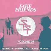 Fake Friends, Vol. 1 by Various Artists