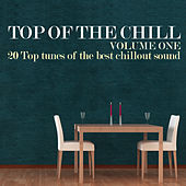 Top of the Chill, Vol. 1 (20 Top Tunes of the Best Chillout Sound) by Various Artists