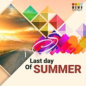 Last Day of Summer by Various Artists