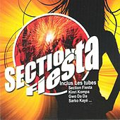 Section Fiesta by Various Artists
