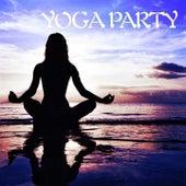 Yoga Party de Various Artists