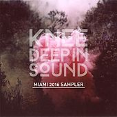 Knee Deep in Sound: Miami 2016 Sampler de Various Artists