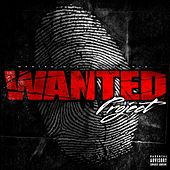 Wanted Project von Various Artists