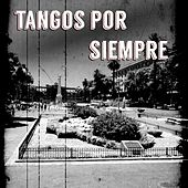 Tangos por Siempre by Various Artists