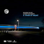 A Train At Night by Steff Da Campo