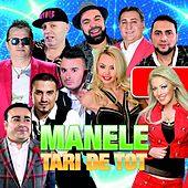 Manele Tari De Tot di Various Artists