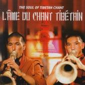 The Soul of Tibetan Chant de Various Artists