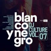 Blanco y Negro DJ Culture, Vol. 7 de Various Artists