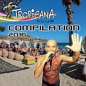 Tropicana Club Compilation 2016 by Various Artists