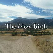The New Birth by Martin Smith