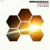 Facedown Remix de Markus Schulz