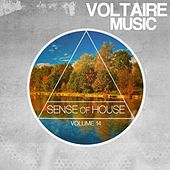 Sense of House, Vol. 14 by Various Artists