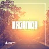 Organica #17 von Various Artists