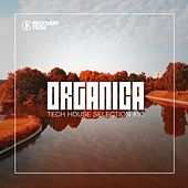 Organica #33 by Various Artists