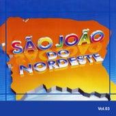 São João do Nordeste, Vol. 3 by Various Artists