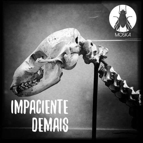 Impaciente Demais by Paulinho Moska