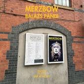 Live at Fac251 von Merzbow